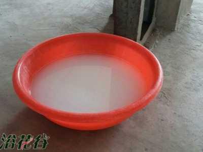 屋里肥皂水杀虫方法 肥皂水杀虫、烟叶水杀虫靠谱么